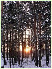 ВКС - Кантри дом отдыха - коттеджи и гостиница - отдых в Подмосковье, Россия - туры и путевки, стоимость и цены.